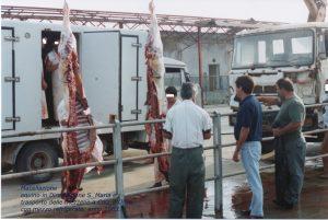 macellazione equini
