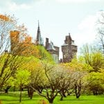 Cardiff, Wales Photographs 4