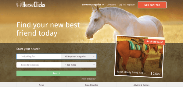 picture of horseclicks.com homepage
