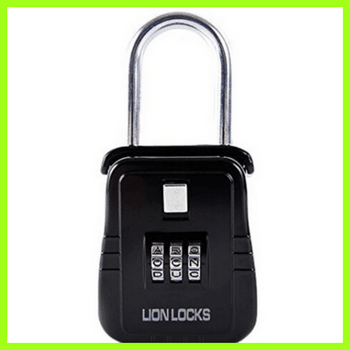 picture of lion locks 2100