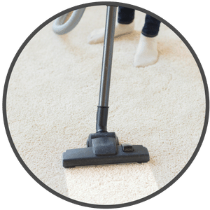 picture of a carpet being shampooed