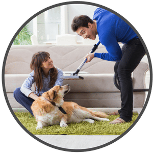 picture of a man vacuuming dog hair