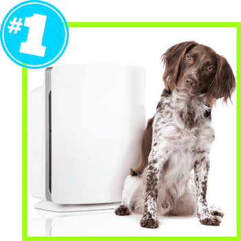 picture of Alen BreatheSmart for Pet Dander and Odor