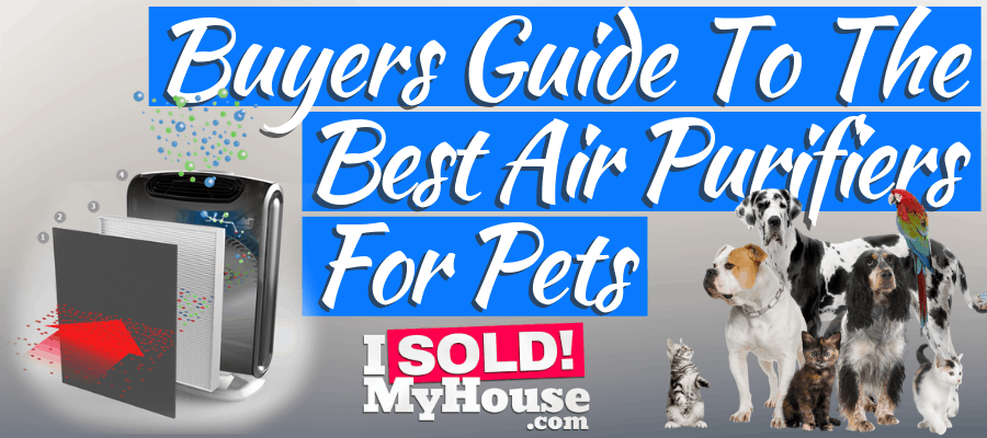 featured image for best air purifier for pets article