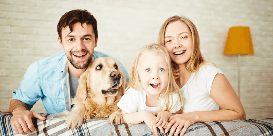 picture of pets at home with the family