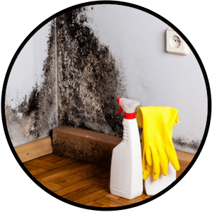 picture of mold being removed with bleach