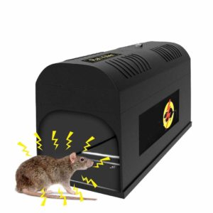 picture of an electrical mouse trap
