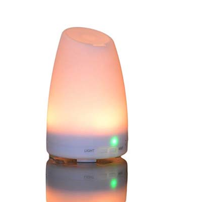 picture of Smiley Daisy Aromatherapy Essential Oil Diffuser