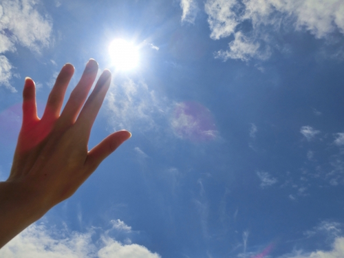 良い睡眠を得るには日光をよく浴びること