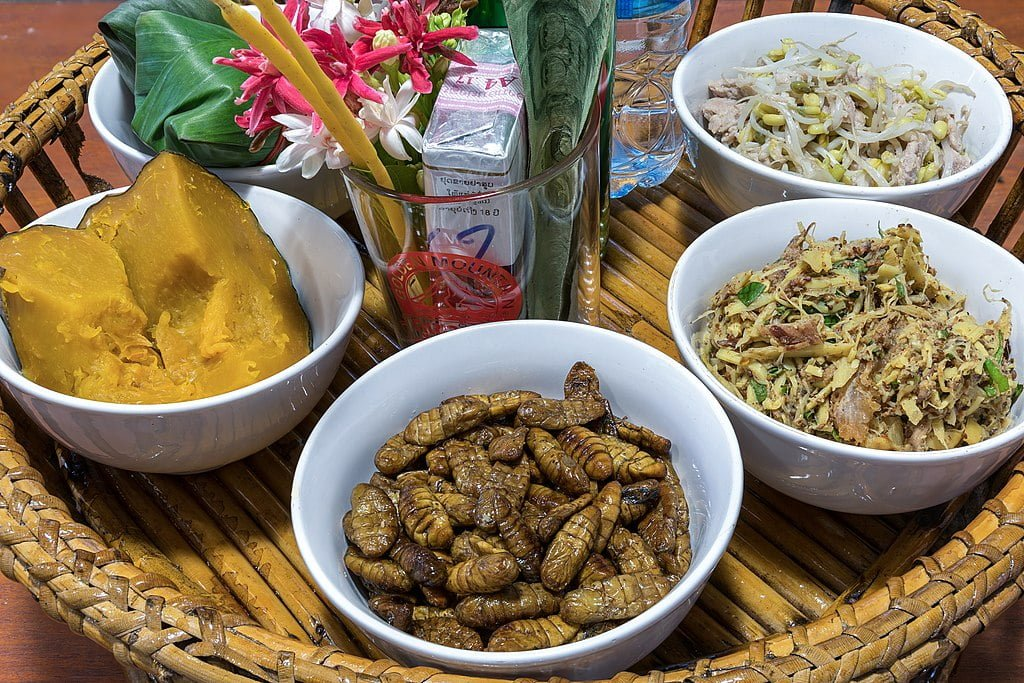 Grabbing some grub: using insects in food production