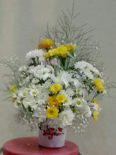 seni sevorum vazoda papatya ve lilyum aranjmanı nı ıspartada göndermek istediğiniz adrese yiğitbaşı çiçekçilik olarok sizin adınıza biz ılaştıralım