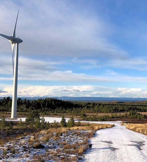 logie wind farm