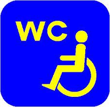 Special needs toilet
