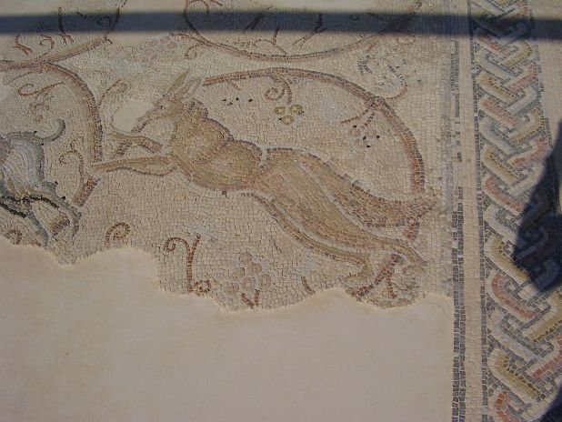 """Section of the synagogue's mosaic floor צילום:ד""""ר אבישי טייכר"""