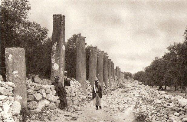 Columns along road in Samaria . Photo: 1925