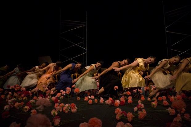 """""""Гвоздики"""" театра танца Пины Бауш. Фото - © Laszlo Szito"""
