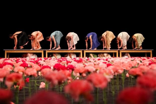 "Сцена из балета ""Гвоздики"" Театра танца Пины Бауш. Фото © Oliver Look"