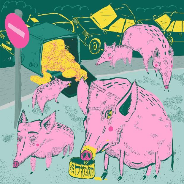 עידו בק, 2016, חזירים