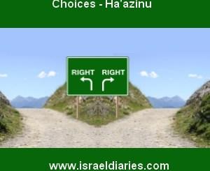 Choices - Haazinu