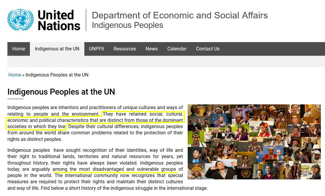 UN describes indigenous peoples as subjugated by a dominating culture