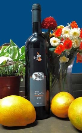 Hallel Ariel wine