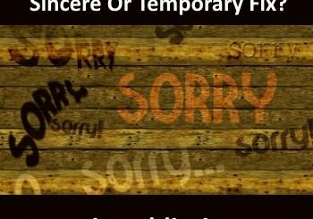 Yom Kippur Blanket Apology