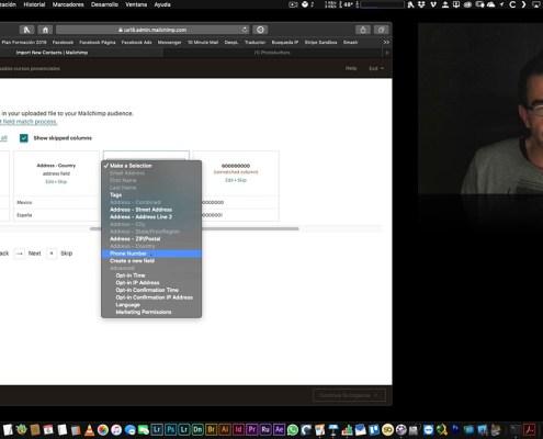 Mailchimp: Creación y gestión de audiencias (listas)