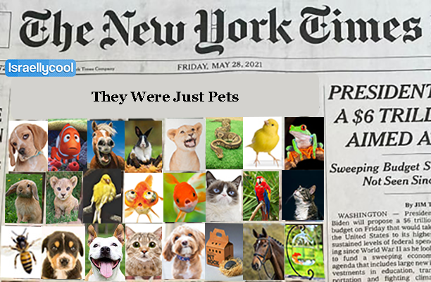 new york times pets