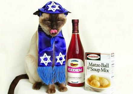 passover Happy Passover