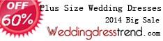 Plus size wedding dresses at Weddingdresstrend.com