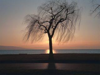 Μοναξιά δρόμος ηλιοβασίλεμα ελπίδα φως