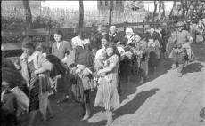Holocaustul evreilor din Basarabia, Bucovina de Nord şi Transnistria