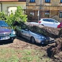 U nedjelju veliko nevrijeme na kopnu. Iščupana stabla, oštećene kuće, uništeni auti...
