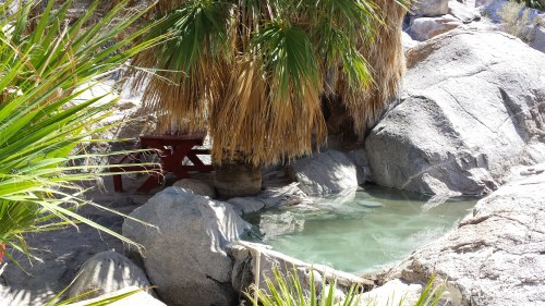 canyon guadelupe hot pool