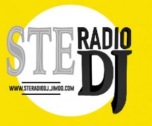 steradiodj italiaccessibile 300x250 - SteRadioDj- Web Radio di Stefano Pietta su tematiche disabilità - Partner ItaliAccessibile