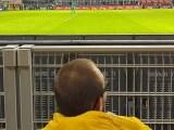 stadio sansiro negato disabili italiaccessibile - Occhio al Cane ! Uno spot sul Cane Guida audiodescritto