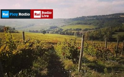 Dieci passi nella storia 29/11/2019 – Italia Coast to Coast – Rai Radio Live