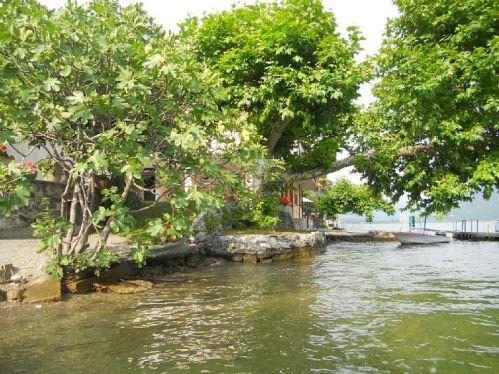 De tuin gezien vanaf het meer