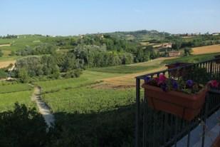 Appartement Barbera | Uitzicht over de wijngaarden van de agriturismo