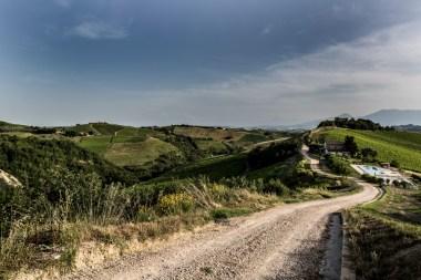De agriturismo ligt op een groot landgoed met wijngaarden en olijfgaarden