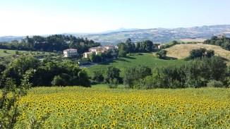 Ligging van de borgo met zonnebloemen