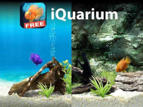 iquariumintro 500x375 iQuarium, lacquario sul tuo iPhone.