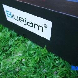 Bluejam8