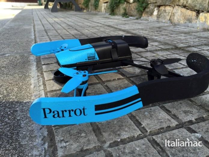 Parrot32