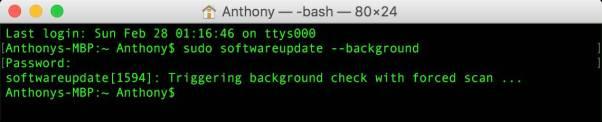 terminal check for update to ethernet broken update Porta Ethernet non funzionante dopo laggiornamento di sicurezza?