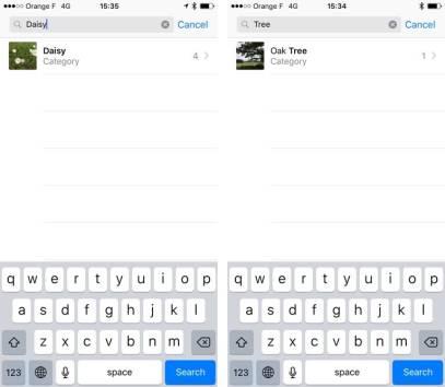 iOS-10-Photos-recognizes-trees-iPhone-screenshot-001