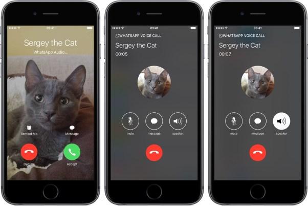 whatsapp 2.16 for ios phone integration iphone screenshot 002 Whatsapp si aggiorna, arriva il supporto ad iOS 10, la possibilità di rispondere alle chiamate dalla schermata di blocco e molto altro