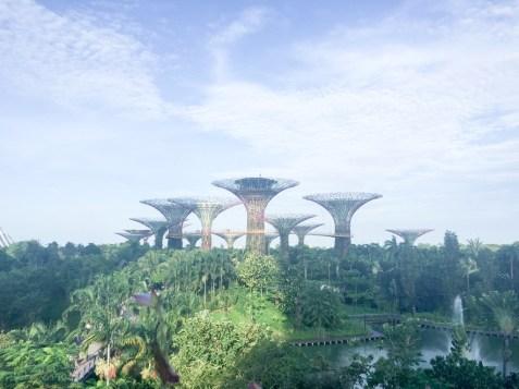 visit singapore, reasons visit singapore, travel singapore, italianbark interior design blog, gardens by the bay