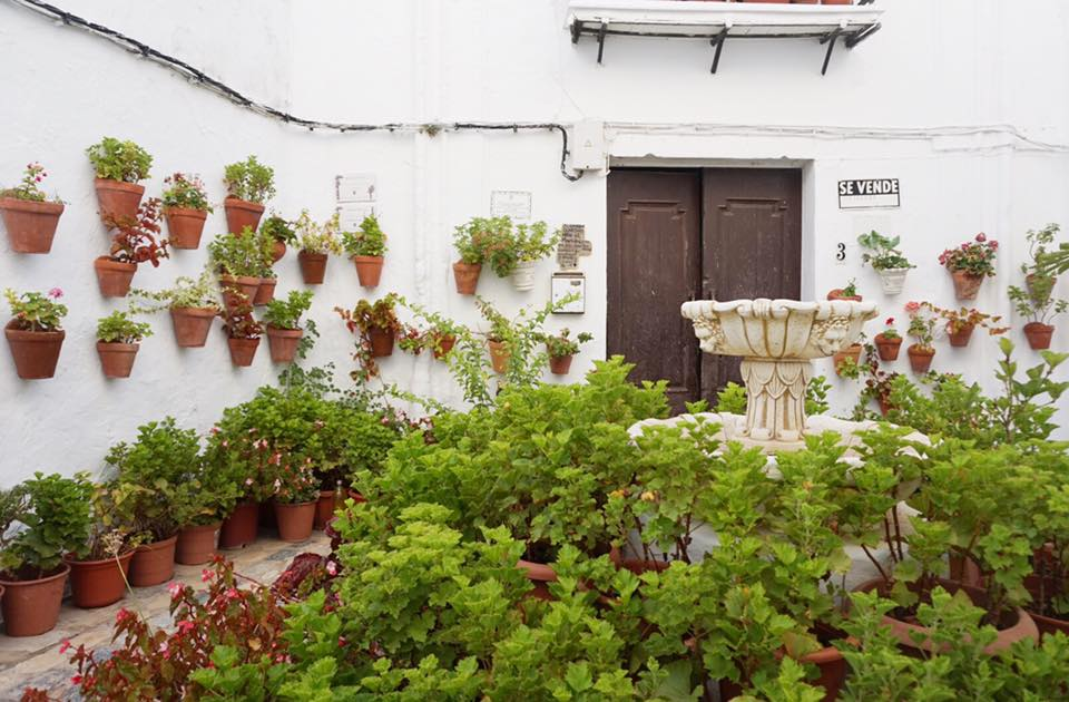 two weeks itinerary in Andalucia, andalucia tour, drive tour andalucia, andalusia pueblos blancos, vejer de la frontera