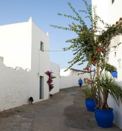 best-pueblo-blanco-in-spain-vejerdelafrontera-white-villages-andalusia-italianbark-60